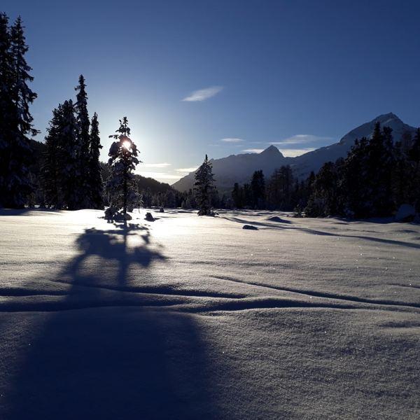 Councious Ski Coaching 2